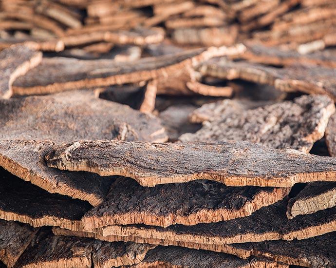Korkrinde | Holz Pirner GmbH | Pommelsbrunn